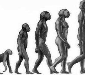 A Ejaculação Precoce de Acordo com a Teoria Evolucionista