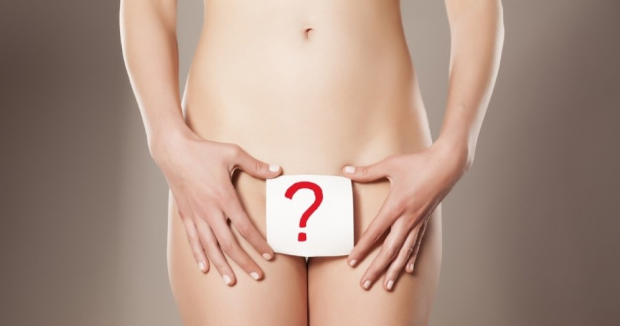 curiosidades sobre a vagina